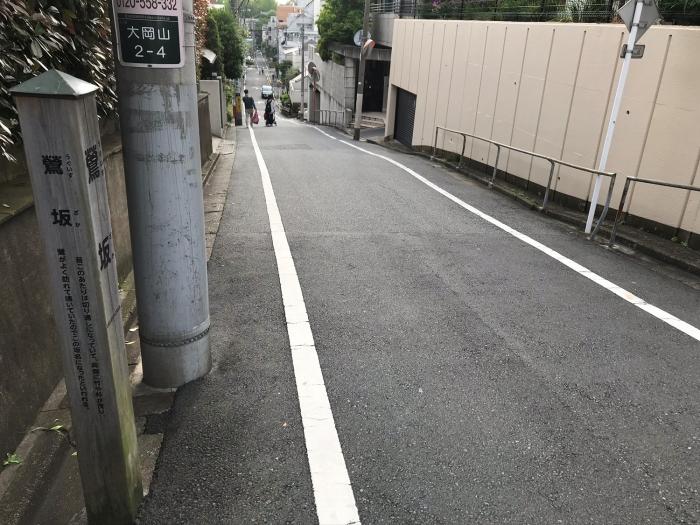 IMG_25241_初鰹